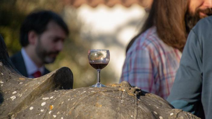 Wine glass on horse