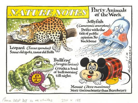 Nature Notes, Party Animals of the Week ̶ 1.ii.14