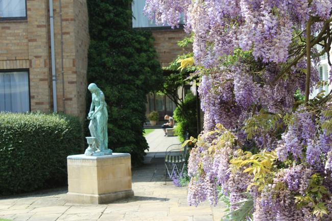 Statue of temperance and wisteria in bloom