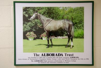 Photo of the Alborada Trust from the Alborada building